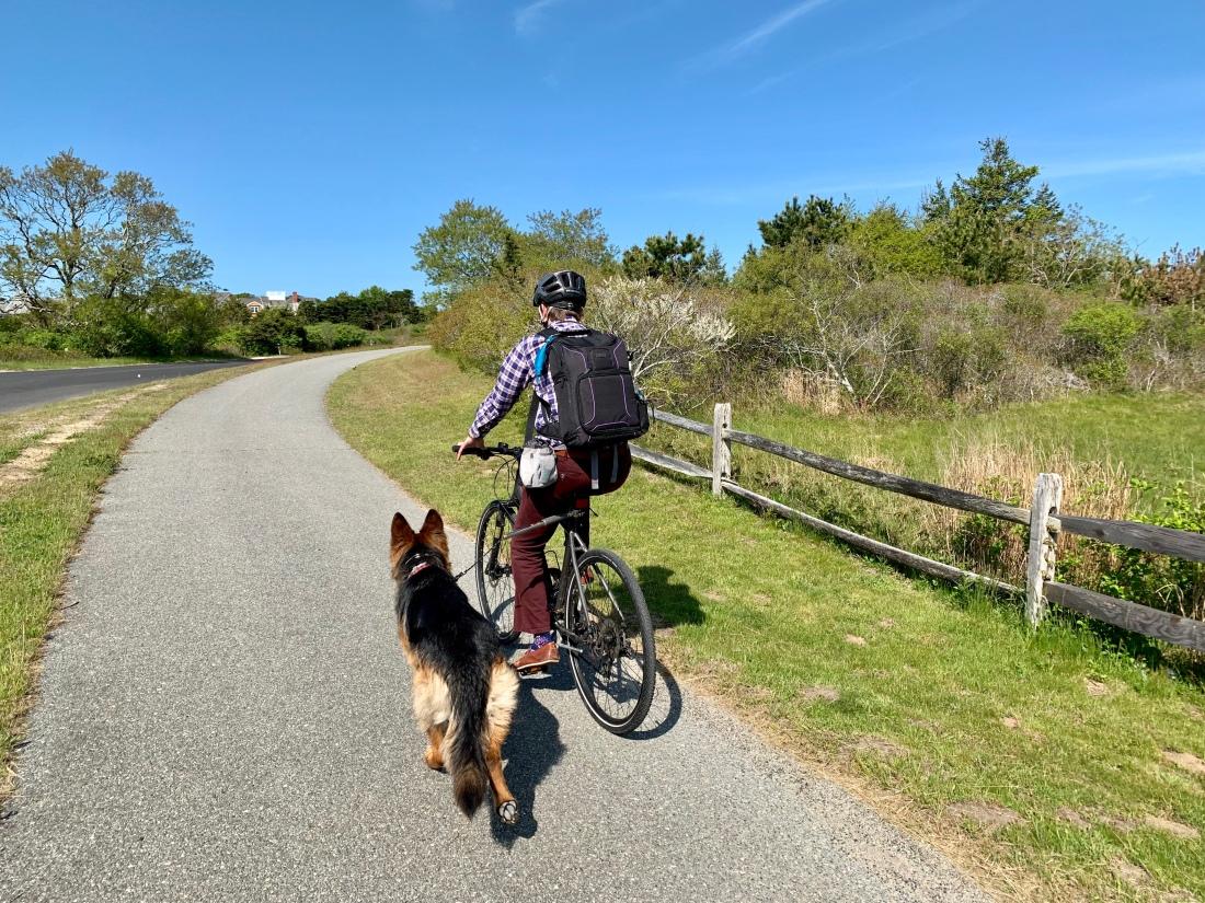 man biking with a dog