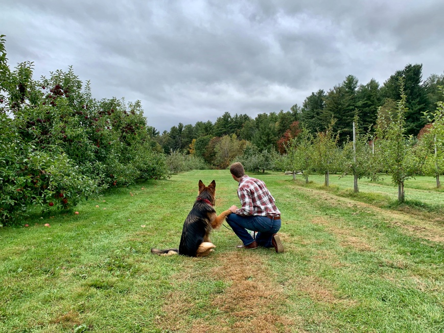 man and dog in a dog-friendly apple orchard