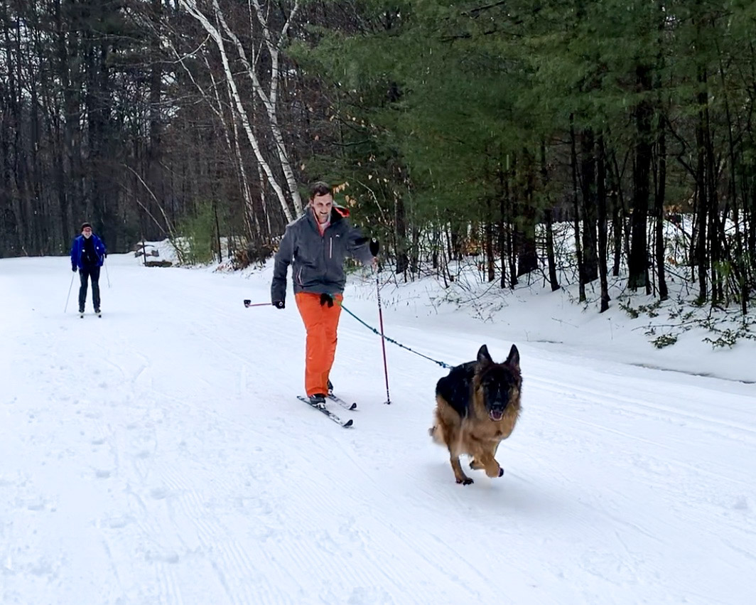 skijoring at Gunstock in New England